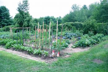 Town Garden is Winsted's hidden gem